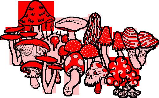 mushroom biome